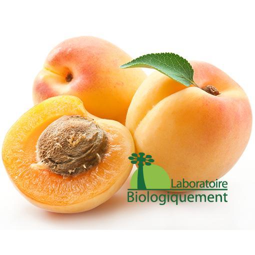 Les amandes de noyaux d'abricots certifiées biologique anti cancer naturel grâce à la vitamine B17